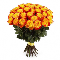 Роза двухцветная 40см за 19 руб.