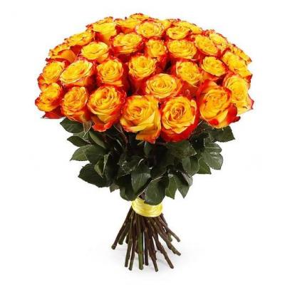 Розы Голландия 40 см.