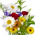 Срезанные цветы поштучно в Саратове