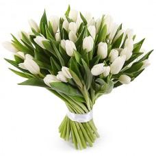 Тюльпаны в ассортименте