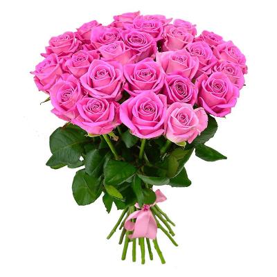 Розовые розы 40 см.