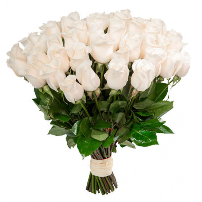 самые красивые букеты белых роз в картинках