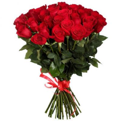 Розы  красные Голландия