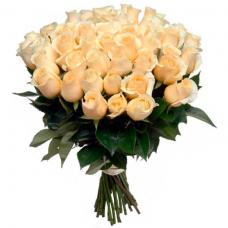 Розы кремовые Голландия