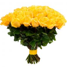 Розы жёлтые Голландия