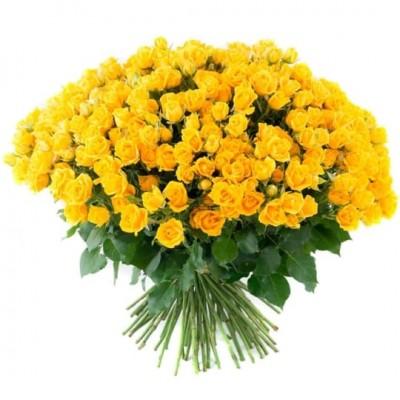 Розы кустовые жёлтые